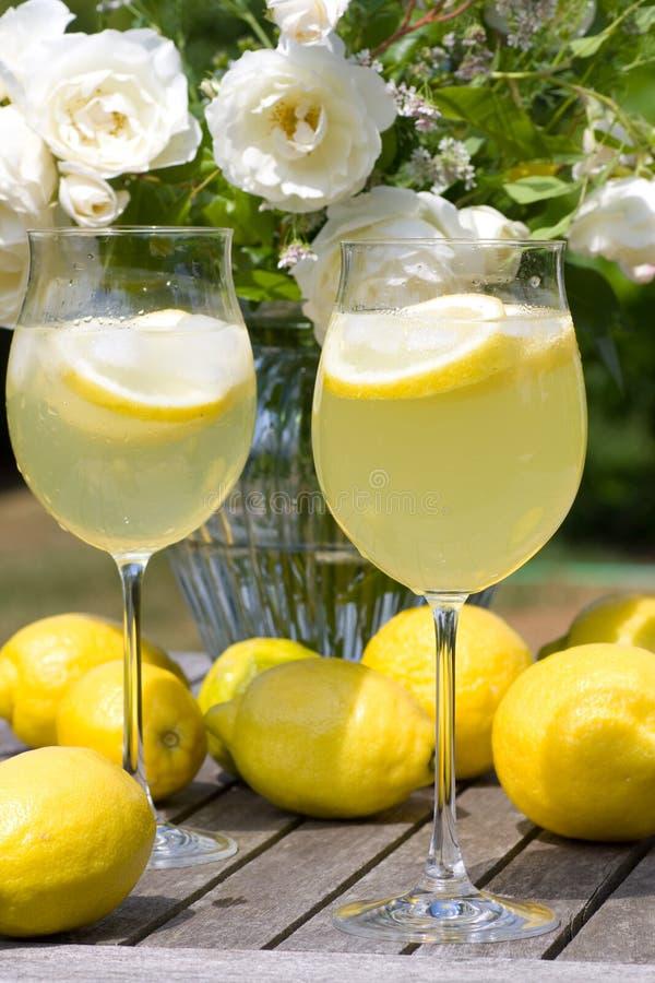 Cocktail con i limoni nel giardino immagini stock