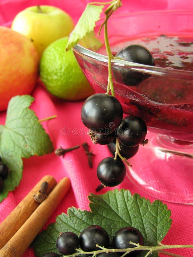 Cocktail con i ribes neri e l'altra frutta immagine stock