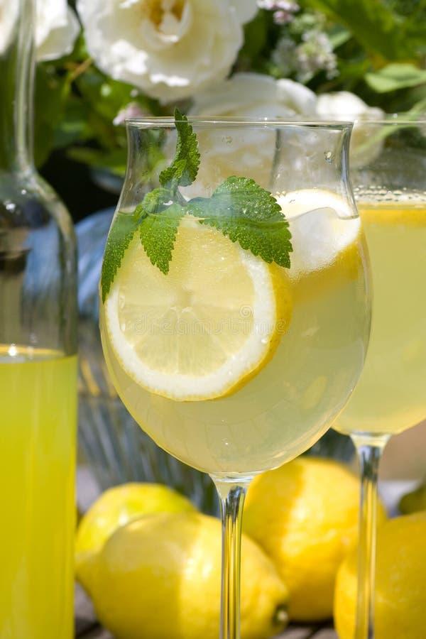 Cocktail con il prosecco fotografie stock libere da diritti