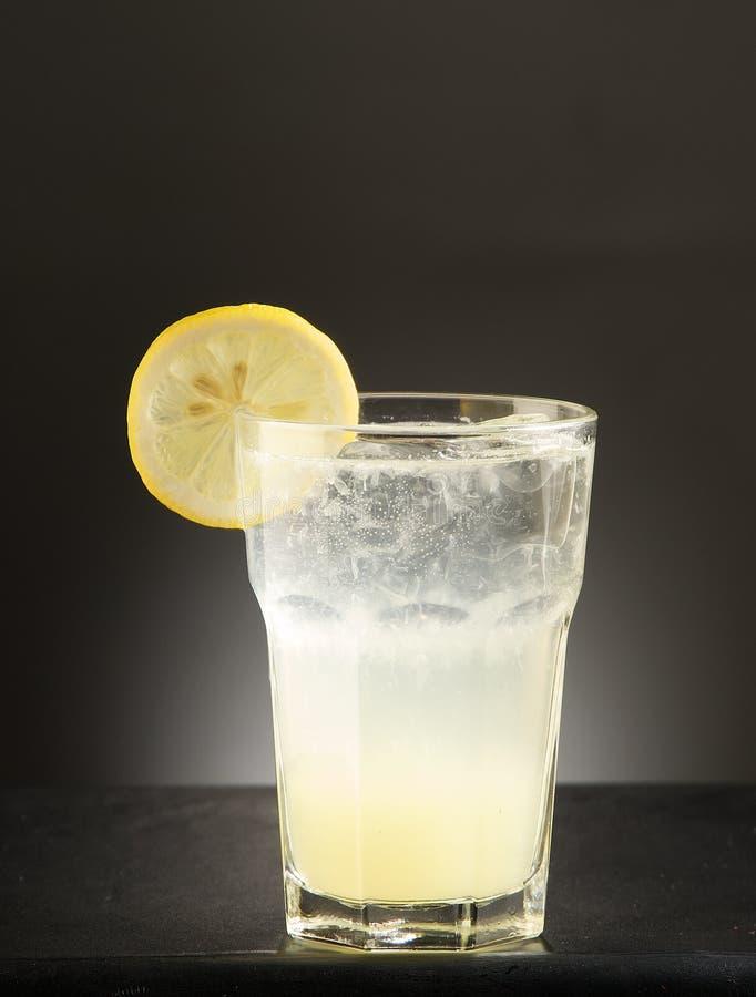 Cocktail d'alcool de Replenesher images libres de droits