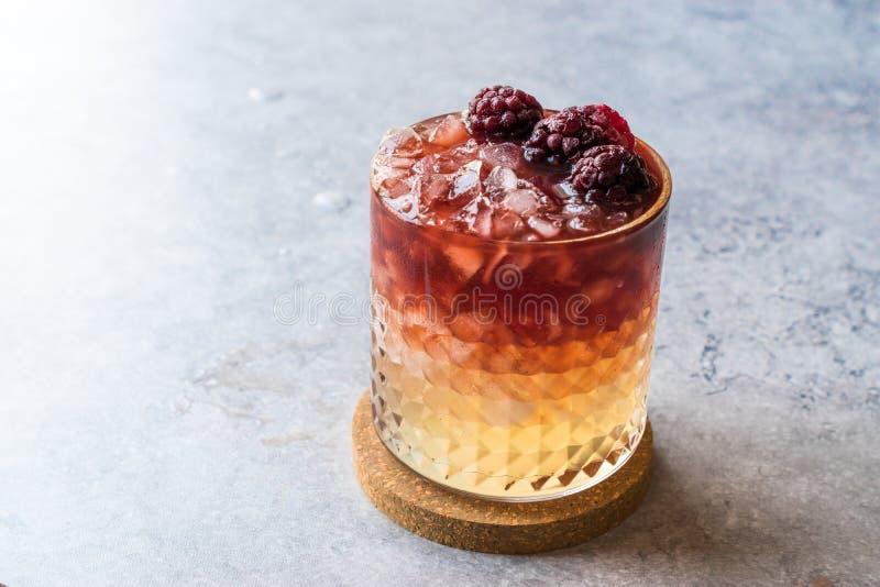Cocktail da amora com amoras-pretas e gelo esmagado imagens de stock