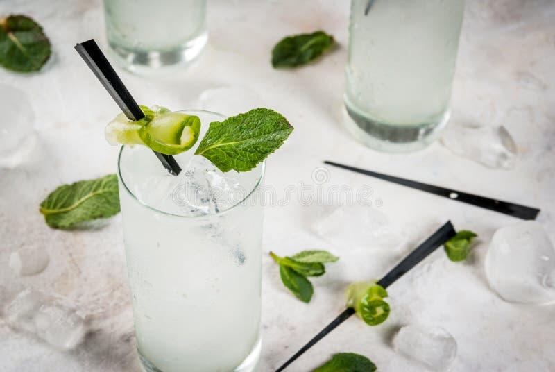Cocktail da gim e do tônico do pepino imagem de stock royalty free