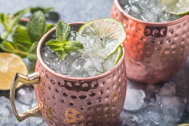 Cocktail da mula de Moscou fotos de stock royalty free