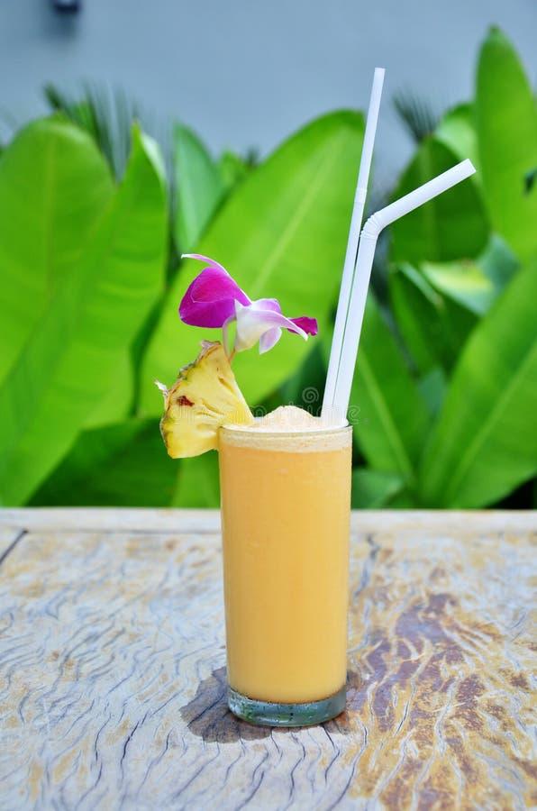Cocktail dans le jardin photographie stock libre de droits