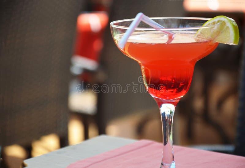 Cocktail de Margarita em um vidro em um fundo de luzes brilhantes imagem de stock royalty free