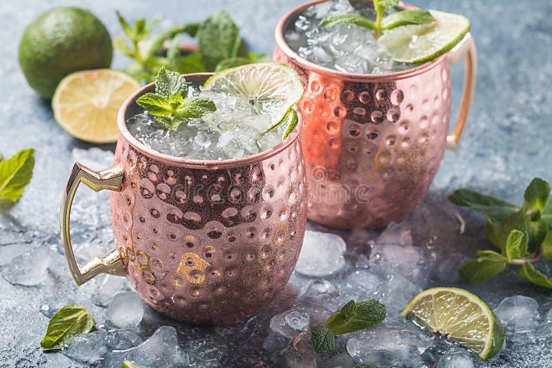 Cocktail de mule de Moscou images libres de droits