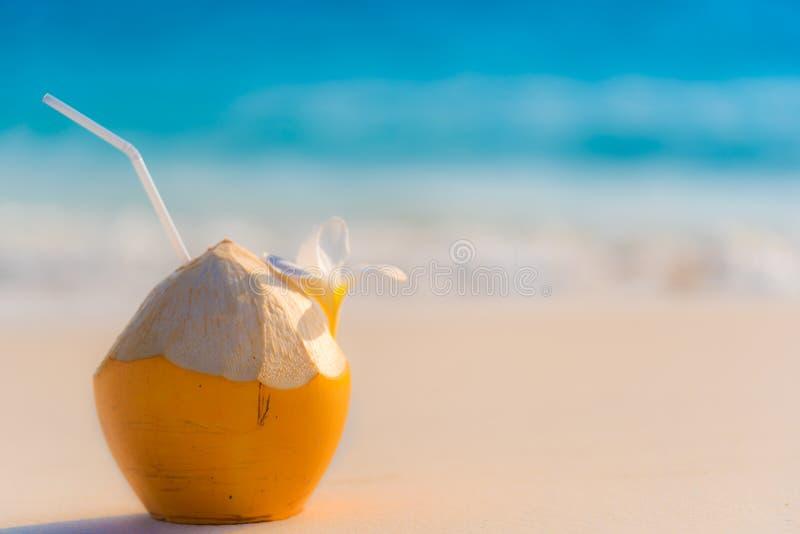 Cocktail de noix de coco images stock