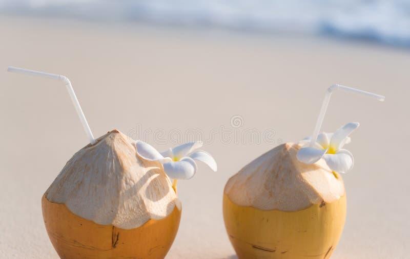 Cocktail de noix de coco images libres de droits