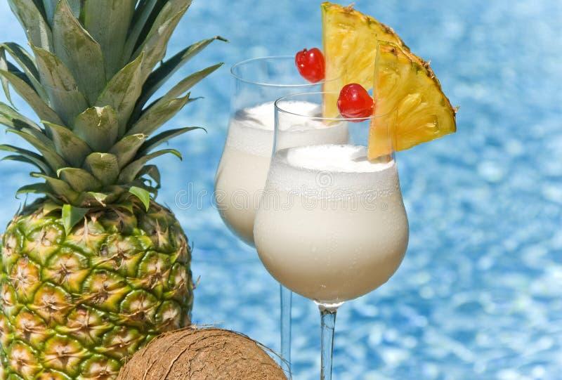 Cocktail de Pina Colada image stock