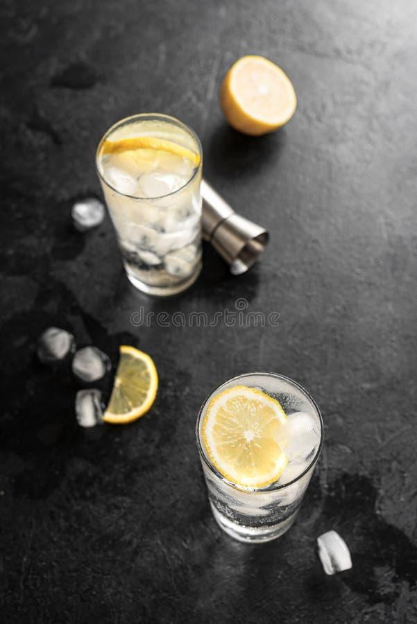 Cocktail de tonique de geni?vre photo libre de droits
