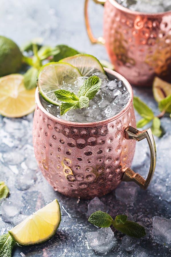 Cocktail del mulo di Mosca fotografia stock libera da diritti