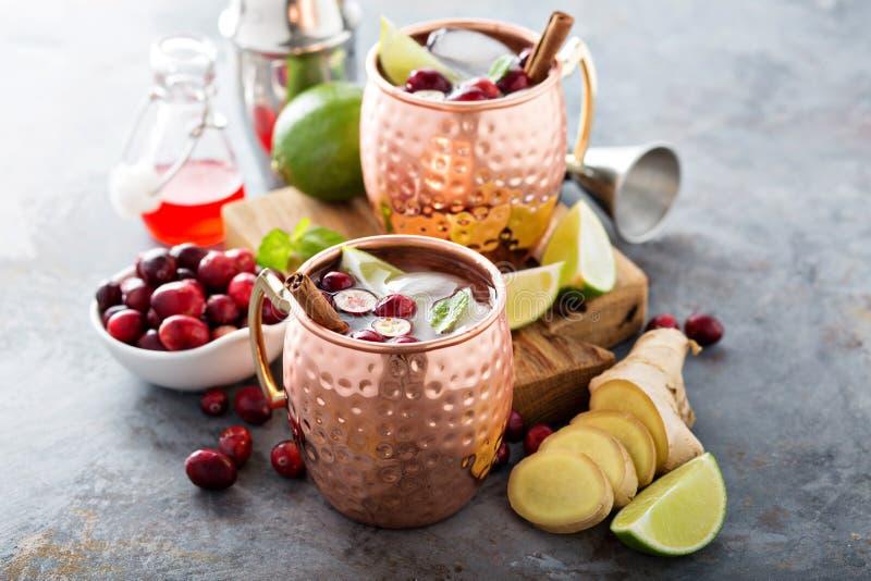 Cocktail del mulo di Mosca con lo zenzero ed il mirtillo rosso fotografia stock