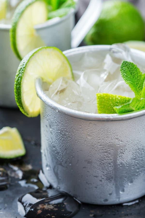 Cocktail del mulo di Mosca con vodka, la birra di zenzero, la calce e la menta fotografia stock