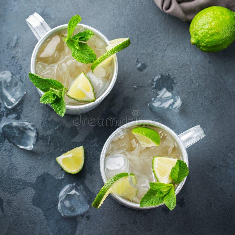Cocktail del mulo di Mosca con vodka, la birra di zenzero, la calce e la menta fotografie stock