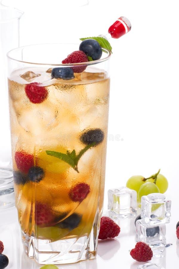 Cocktail del punzone di Kew immagini stock