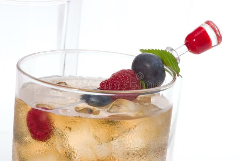 Cocktail del punzone di Kew fotografia stock libera da diritti