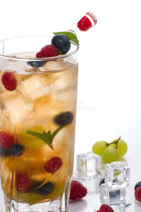 Cocktail del punzone di Kew fotografia stock