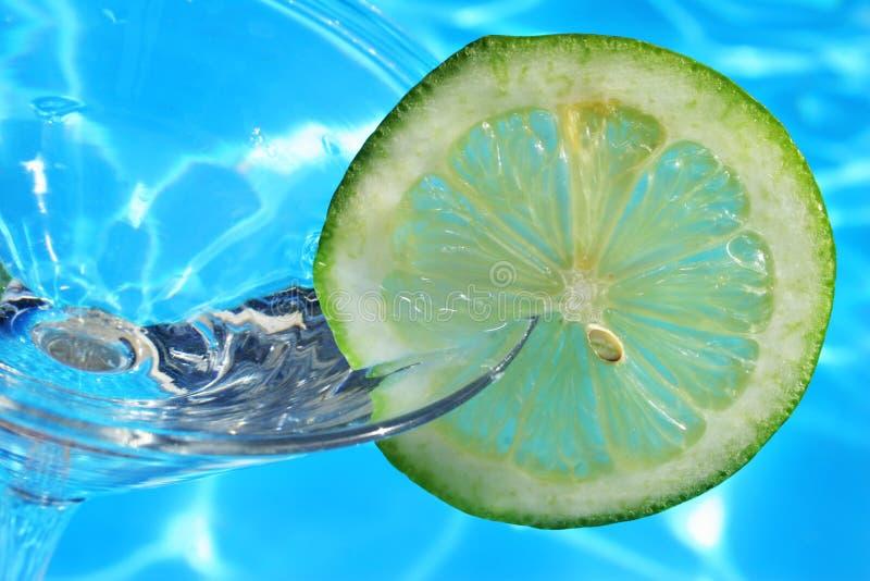 Cocktail dell'agrume di estate fotografie stock libere da diritti