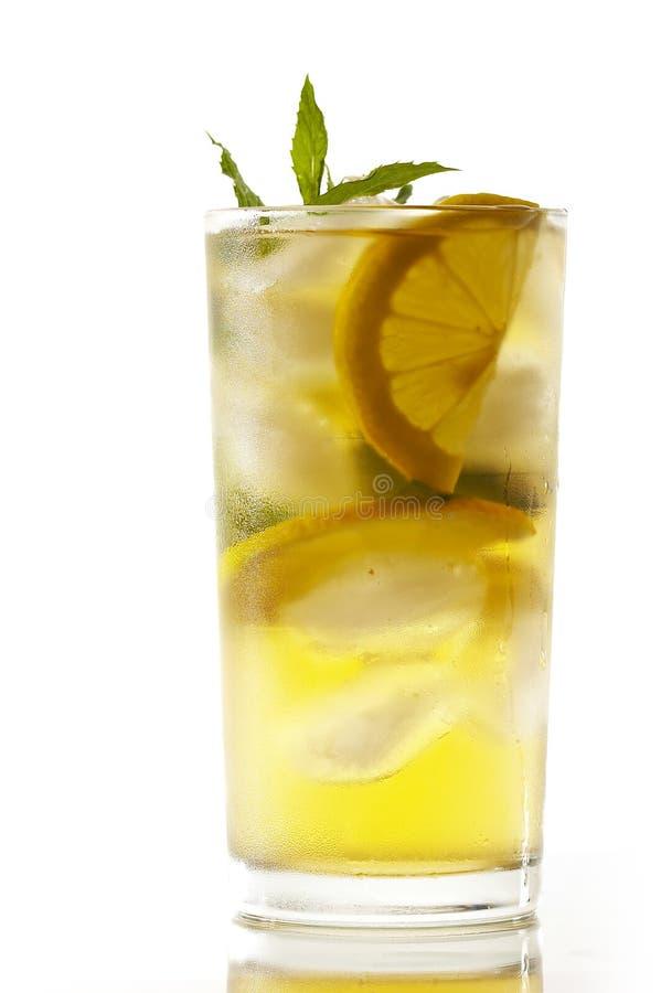 Cocktail della menta fotografia stock