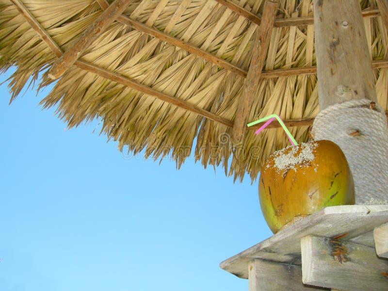 Download Cocktail Della Noce Di Cocco Della Spiaggia Immagine Stock - Immagine di paglia, tropico: 3884309