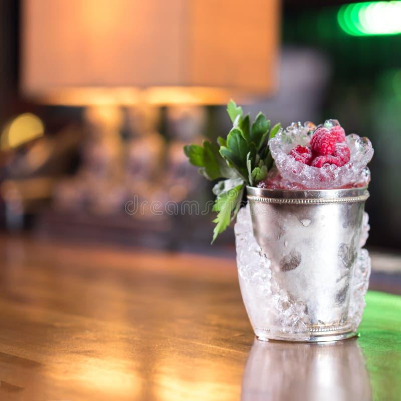 Cocktail delle giulebbe immagini stock libere da diritti