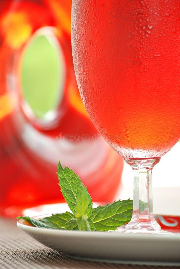 Cocktail do suco de airela imagem de stock royalty free