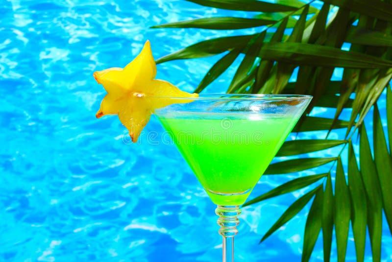 Cocktail dos vidros foto de stock royalty free