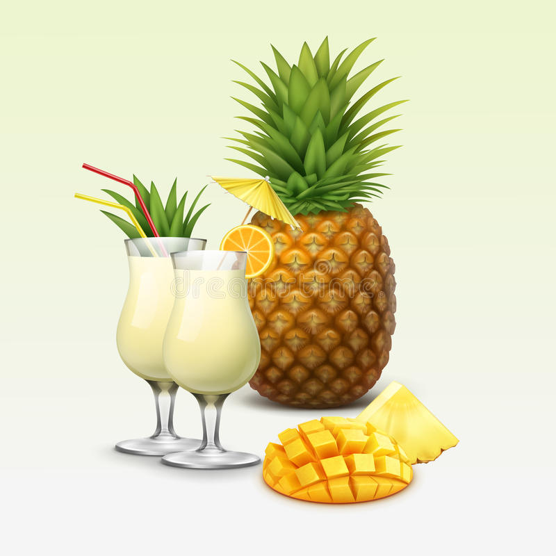 Cocktail e frutos tropicais ilustração royalty free