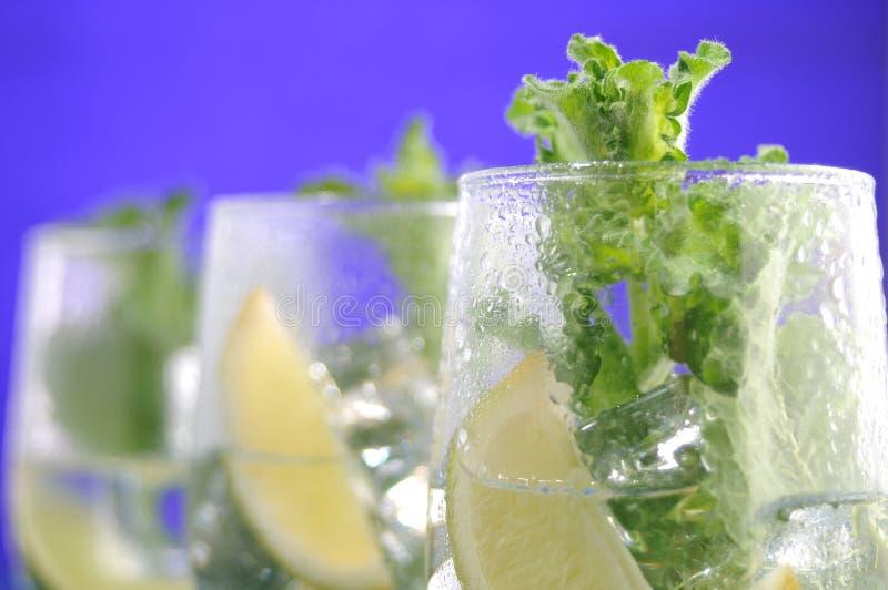 Cocktail e menta di frutta immagine stock libera da diritti