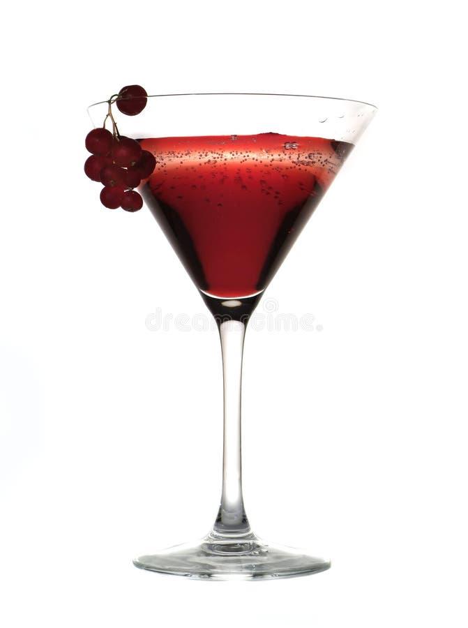 Cocktail en Fruit royalty-vrije stock foto