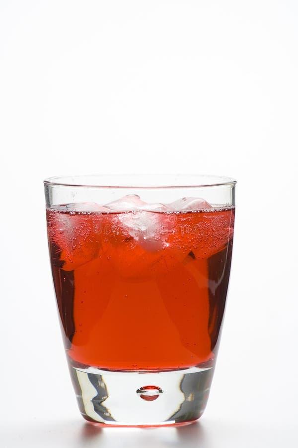 Cocktail freddo di vetro del martini isolato fotografia stock