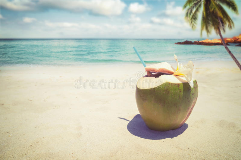 Cocktail frescos do coco com dentro na praia tropical arenosa - vacation no verão fotografia de stock royalty free
