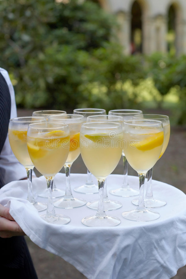 Free Cocktail Hour Stock Photos - 5862053