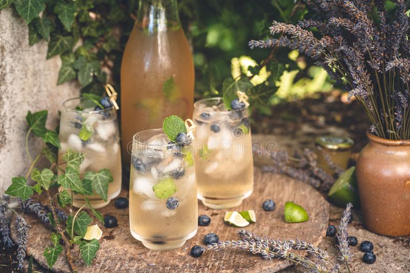 Cocktail-Lavendel mit Limonade und Blaubeeren für Sommer lizenzfreie stockfotos