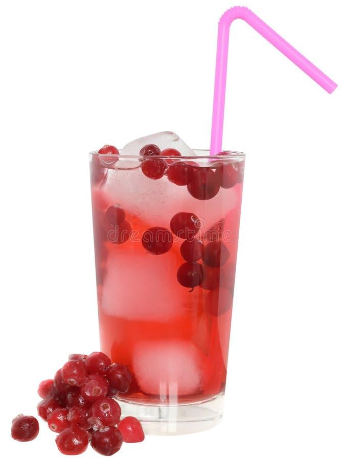 Cocktail met Amerikaanse veenbessap en geïsoleerde ijsblokjes stock afbeelding