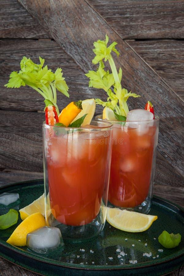 Download Cocktail met tomatesap stock afbeelding. Afbeelding bestaande uit alcohol - 114225349
