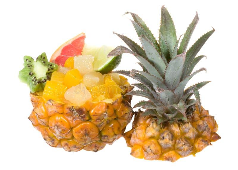 Cocktail mit Früchten stockbilder