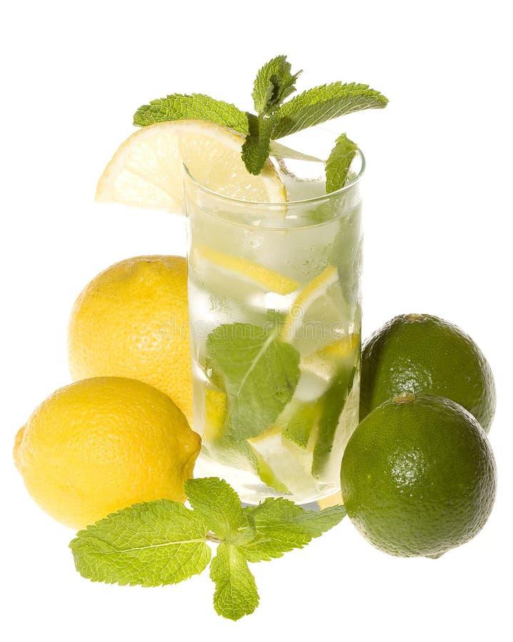Cocktail mit Zitrone und Kalk stockfotografie