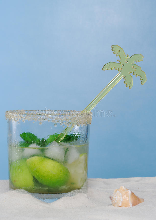 Free Cocktail, Mojito Stock Images - 13121534