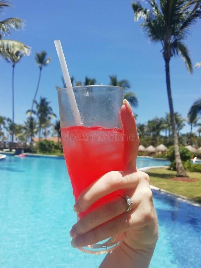 Cocktail pela associação sob um céu azul fotografia de stock