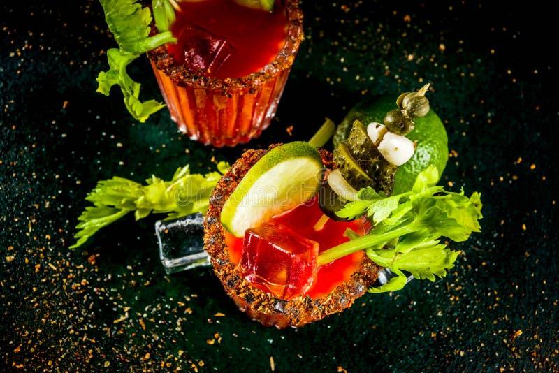 Cocktail piccante di bloody mary con il contorno immagine stock