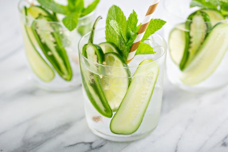 Cocktail piccante e di rinfresco con calce fotografie stock libere da diritti
