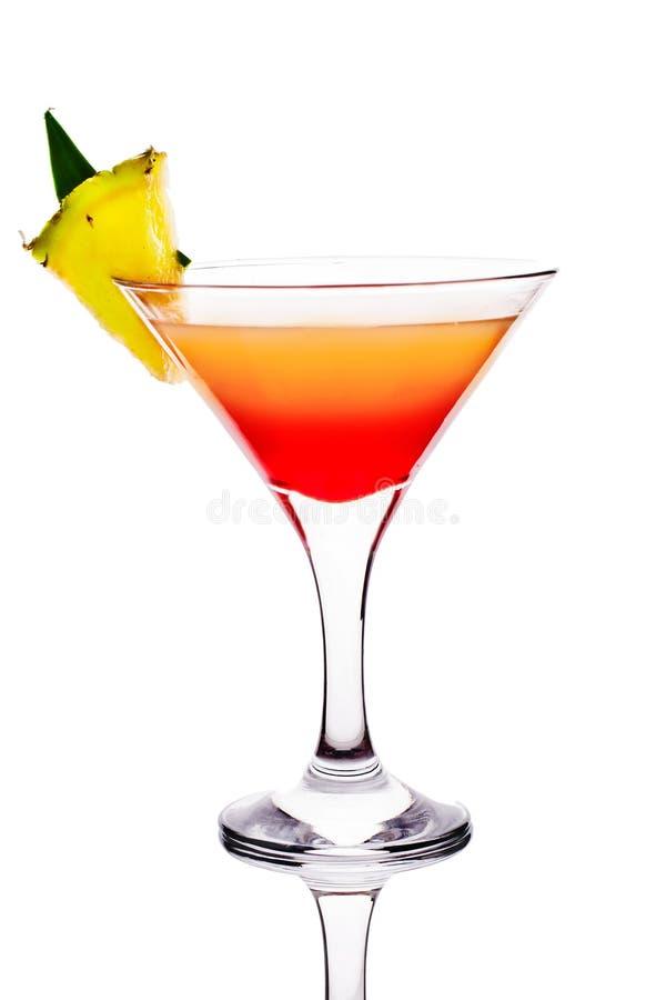 Cocktail sur le fond blanc images stock