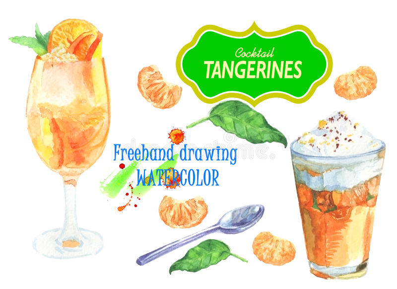 Cocktail with tangerines. Set of cocktails tangerine, Mandarin slices and spoon. For design templates, print on paper. Healthy food, natural product vector illustration