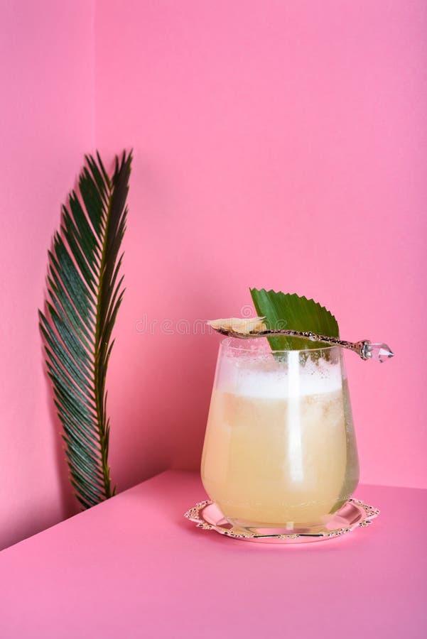 Cocktail tonique de genièvre en verre de highball sur le compteur de barre Boisson régénératrice tropicale images libres de droits