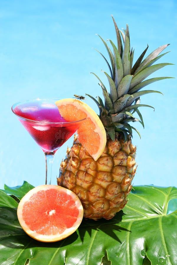 Cocktail tropical image libre de droits
