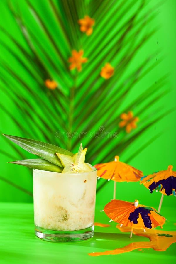 Cocktail tropical d'été photos libres de droits
