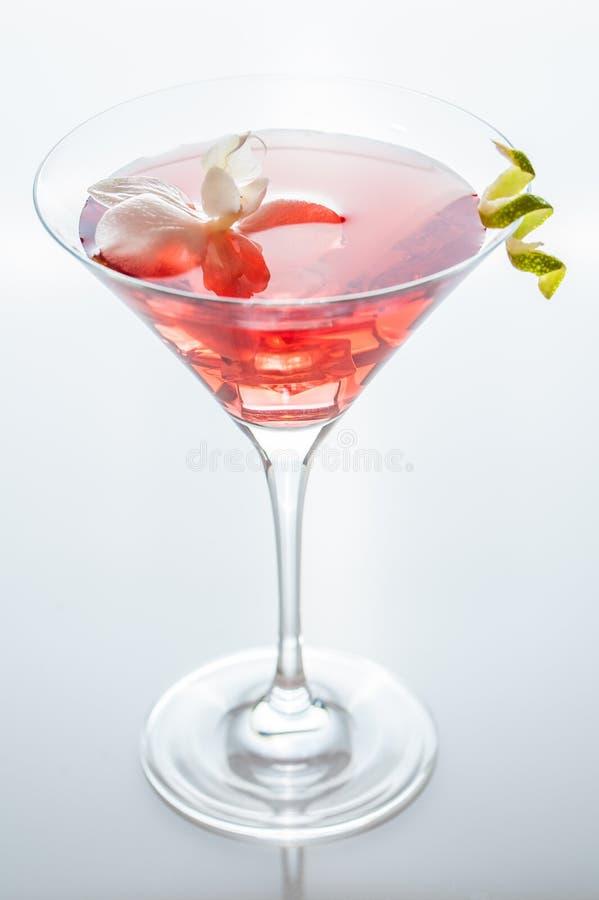 Cocktail tropical d'été dans un verre de martini avec la fleur tropicale photo stock