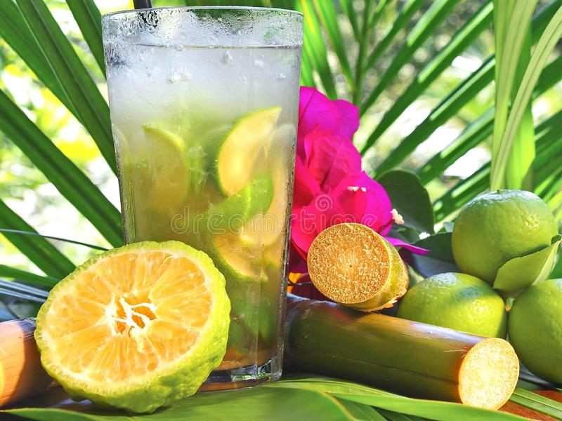 Cocktail tropical de Caipirinha avec la chaux et le Sugar Cane photos stock