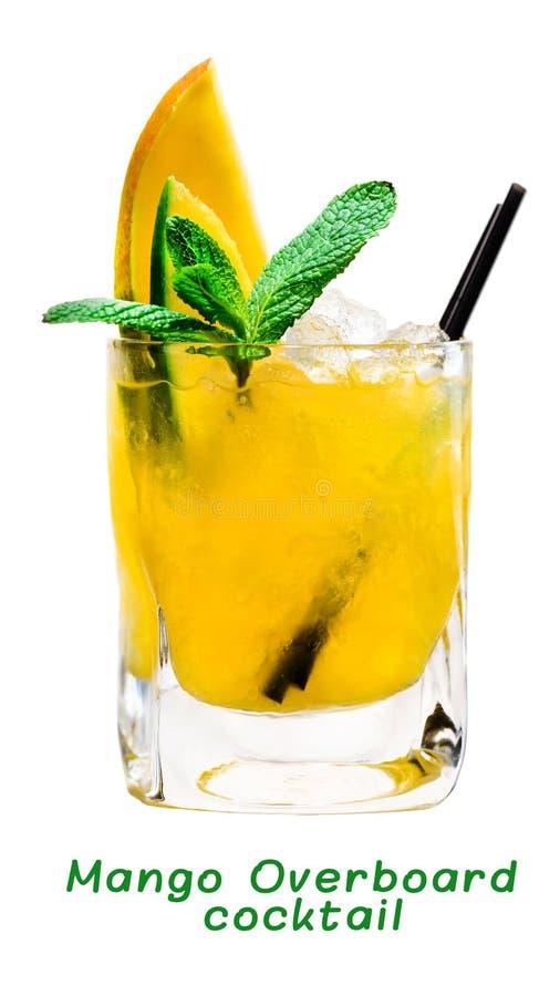 Cocktail tropical frais de mangue avec la menthe et la paille photos stock